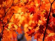 Top autumn destinations